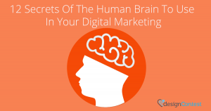 12 SECRETS OF THE HUMAN BRAIN TO USE IN YOUR DIGITAL MARKETING